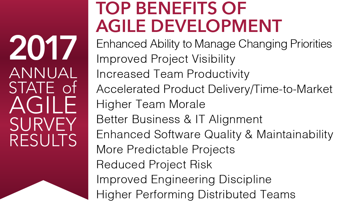 2017 Agile Survey.png