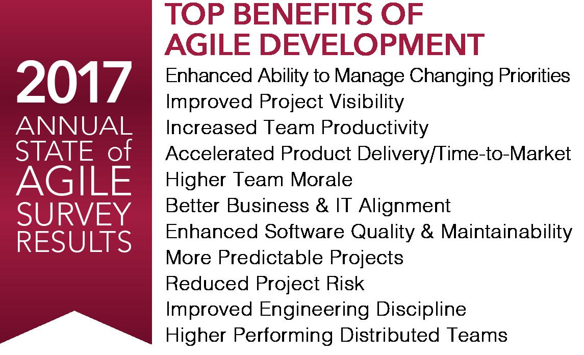 2017 Agile Survey.png