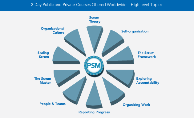 PSM-Overview-2013.png