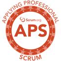Applying Professional Scrum Training